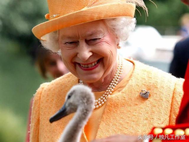 关于英国王室成员的15个古怪生活方式,英国女王雇人给她磨合新鞋