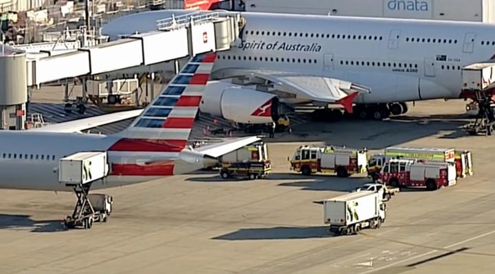 悉尼机场飞机上发现可疑物质 疑似化学泄漏物品