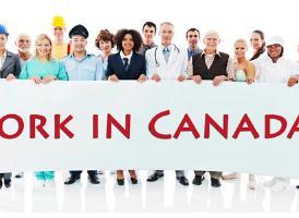 男女都怕入错行!加拿大有哪些年收入突破7万且需求量大的工作?<