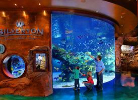 西弗顿水族馆 Silverton Aquarium<
