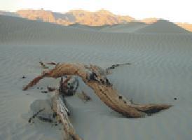 死亡谷国家公园 Death Valley National Park<