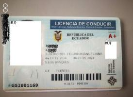 大陆驾照可以在厄瓜多尔使用吗?<