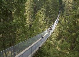 温哥华必玩: 卡皮拉诺吊桥公园(Capilano Suspension Bridge Park)门票(含树梢探险+悬崖步道)