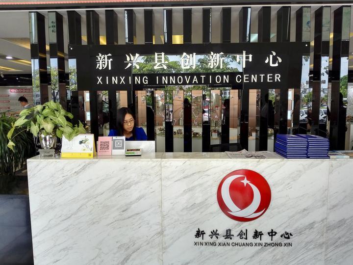 海外华媒广东行一行走进云浮新兴凌丰集团及创新中心
